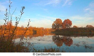 спокойный, красивая, над, осень, лес, закат солнца, lake.