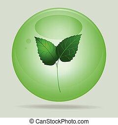 стакан, зеленый, leafs, сфера