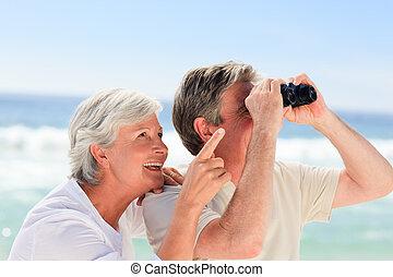 старшая, пара, наблюдение, пляж, птица