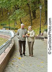 счастливый, пожилой, пара