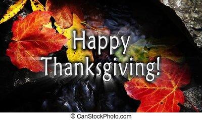 счастливый, thanksgivign, осень, ручей