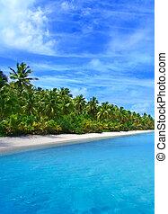 тропический, берег