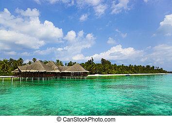 тропический, воды, мальдивы, кафе, пляж