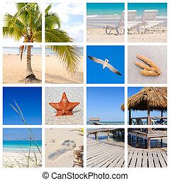 тропический, коллаж, пляж