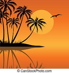 тропический, остров