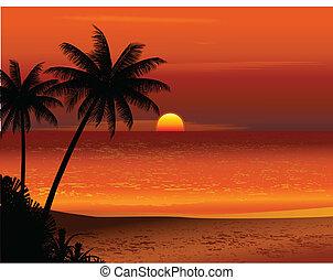 тропический, пляж, закат солнца