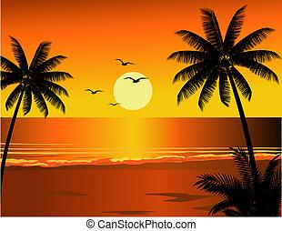 тропический, пляж, иллюстрация