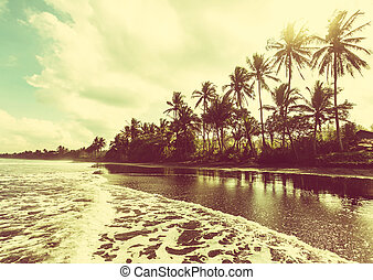 тропический, пляж