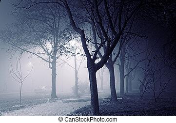 туманный, ночь