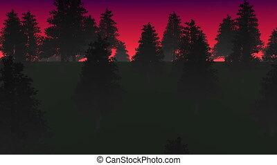 туман, в состоянии, лес, петля, ночь