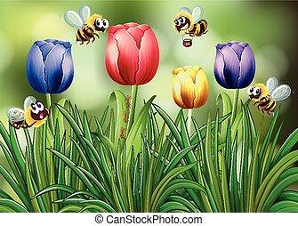 тюльпан, летающий, сад, bees