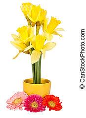 украшение, daffodils, пасха, gerberas