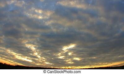 упущение, лес, закат солнца, время, над, hd