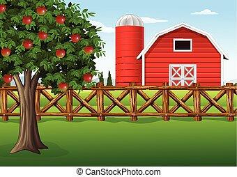 ферма, дерево, яблоко