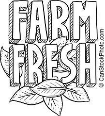 ферма, свежий, эскиз, питание