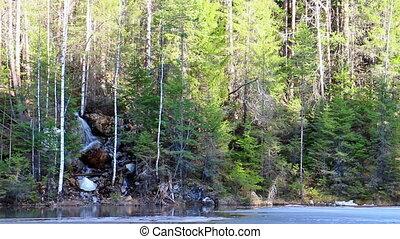 хвойный, waterfall., лес, панорама