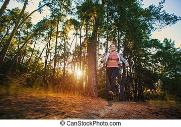хороший, молодой, девушка, на, утро, бегать трусцой, в, , лето, лес