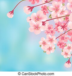 цвести, вишня, абстрактные