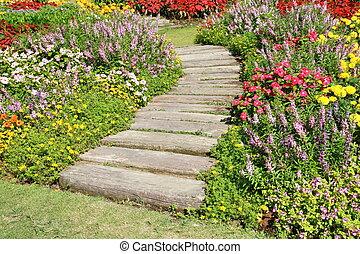 цветок, камень, дорожка, сад