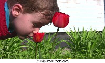 цветок, ребенок