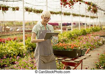 цветок, сад, таблетка, женщина, с помощью, старшая