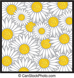 цветок, шаблон, маргаритка