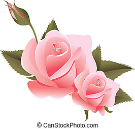 цветочный, дизайн, элемент