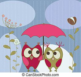 цветочный, приветствие, карта, with, owls