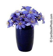цветы, весна, красивая