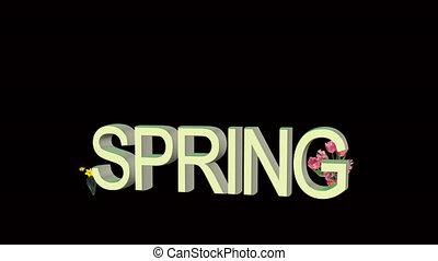 цветы, весна