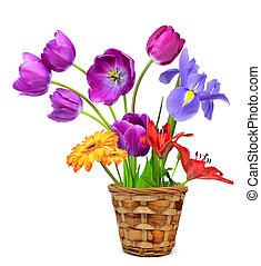 цветы, горшок, весна