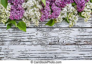 цветы, сирень