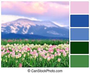 цвет, поле, палитра, swatches, tulips