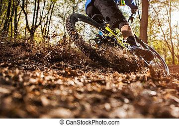 человек, верховая езда, , гора, велосипед