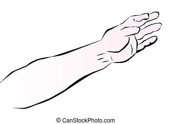 человек, рука