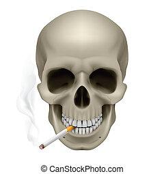 человек, череп