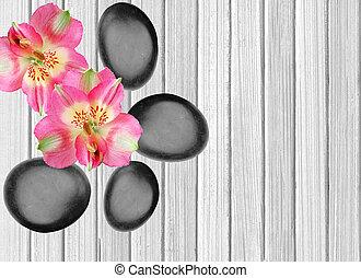 черный, спа, stones, and, розовый, орхидея, на, белый, деревянный, задний план