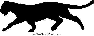 черный, creeps, вверх, жертва, пантера