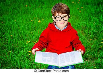 чтение, на, , трава