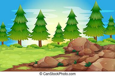 אבנים, גדול, דאב עצים