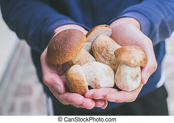 אוכל, ארנה, בחר, בחור, לא מבושל, לאחרונה, סגנון חיים, פטריות, להחזיק, בריא, edulis, -