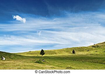 אחו, נוף., שמיים דרמטיים, איזורי כפר, מלכותי