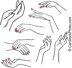 אישה, קבע, ידיים
