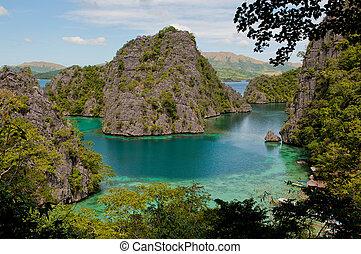 אי כחול, coron, kayangan, אגם, או, לגונה, פיליפינים
