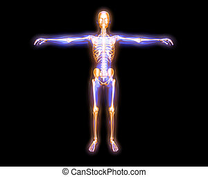 אנרגיה, גוף