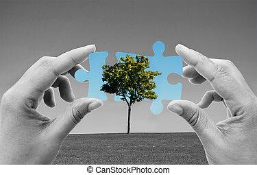 אנרגיה, ירוק, פתרונות