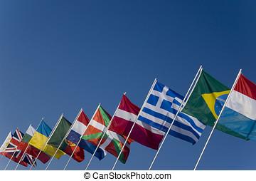 ארץ, דגלים