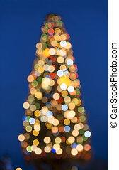 אשוח, טשטש, חג המולד, אור