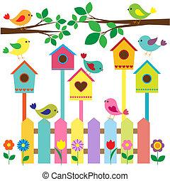ביתי ציפור