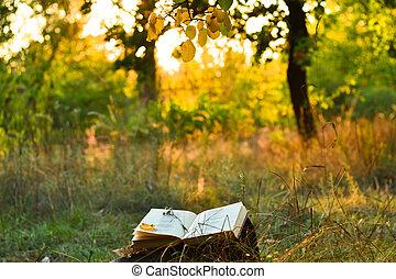 בציר, מתחת, עץ, ספר של שירה, בחוץ